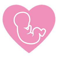 Calendario del embarazo